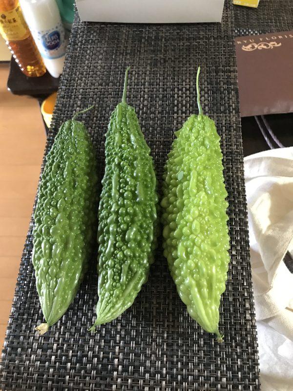 今年初収穫。